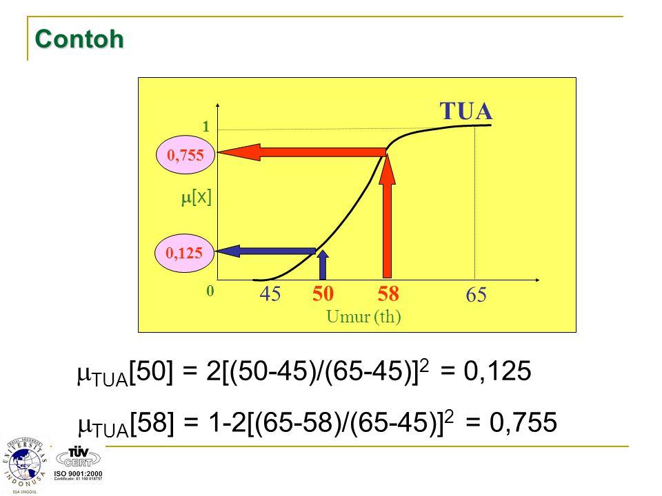Contoh 50. 1. m[x] 45. 65. 58. TUA. Umur (th) 0,755. 0,125. TUA[50] = 2[(50-45)/(65-45)]2 = 0,125.